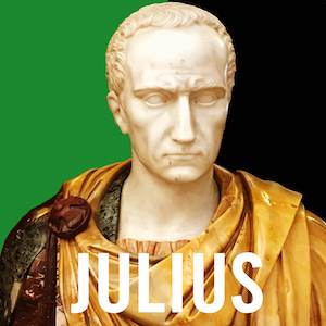 Julius art 300